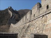Yes!! We made it to the Great Wall of China, just out of Beijing - and it's fabulous!!: by locomocean, Views[900]