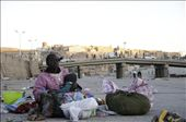 A big humanitarian issue is the homeless families under Ghardaia's bridges, most of whom are Malian immigrants,  But despite all the suffering and the blind eyes of the locals, their children are feeding their smiles with the hope of a better future.: by lolakhalfajournal, Views[85]