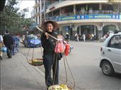 On the streets of Hanoi, 'taking over' for a pineapple vendor.  After this, I felt obliged to buy...!: by lolo, Views[382]