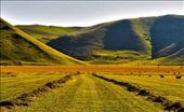 the way to paradise (Castelluccio of Norcia): by loreno_micoli, Views[108]
