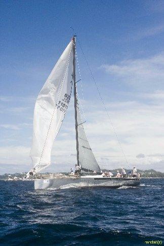 A sailboat during the regatta