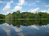 Amazon river tributary: by lou, Views[381]