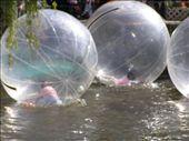 Kids in a ball... looks like fun!: by loza3210, Views[288]