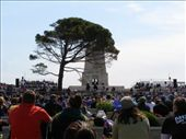 Up at the lone pine Australian Service: by loza3210, Views[157]