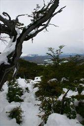 by luchinko, Views[258]