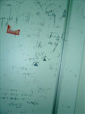 Back of toilet graffiti, in Spanish.: by luchinko, Views[233]