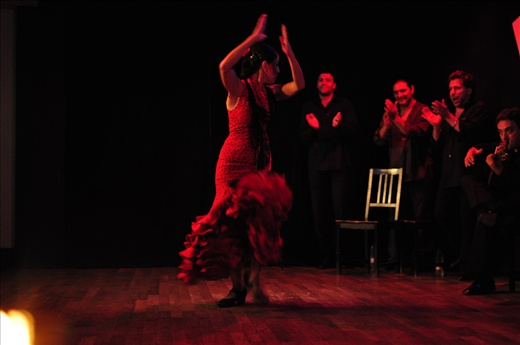Dancing the Flamenco - If ever there was a music and dance that epitomized pain, passion, expression, rhythm, it is the Flamenco. It's difficult to let your attention stray when you are hypnotized by the incessant tapping of her feet and the heart wrenching vocals that accompany her movements.