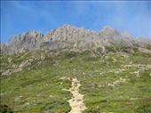 Cradle Mtn: by lyrebird, Views[223]