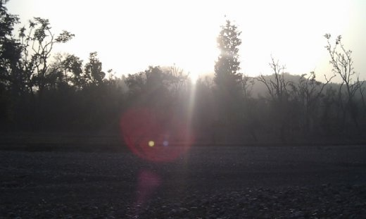 The sun sets of the park