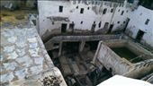 Open Air Tanneries: by macedonboy, Views[99]