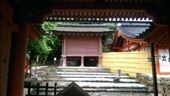 Kasuga Taisha Shrine: by macedonboy, Views[56]