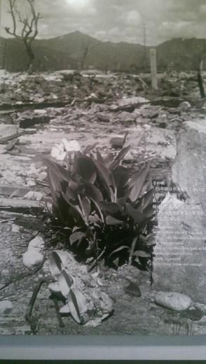 Hope for Hiroshima