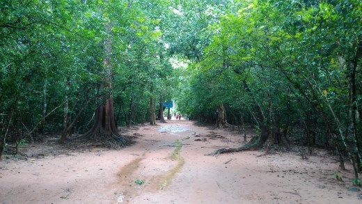 Long walk to Ta Prohm