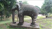 Elephant on first level of East Mebon: by macedonboy, Views[29]