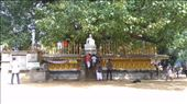 Shrine at Kelaniya Raja Maha Vihara	: by macedonboy, Views[61]