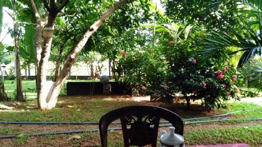 Thisara Guest House - Garden view