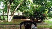 Thisara Guest House - Garden view: by macedonboy, Views[40]