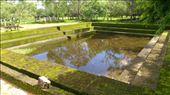 Random pond: by macedonboy, Views[83]