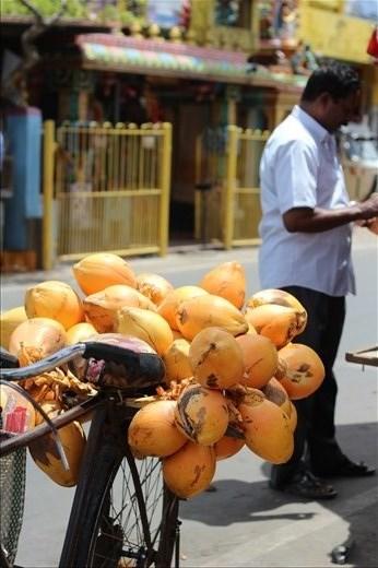 Coconut kiosks line Sri Lankan streets