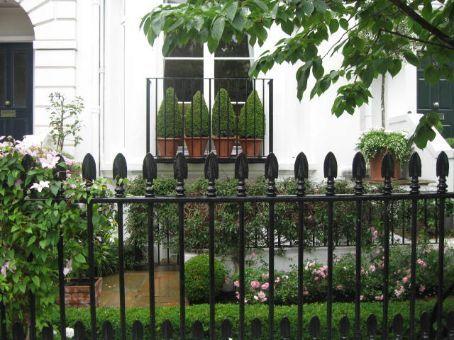 A cute front yard in Kensington