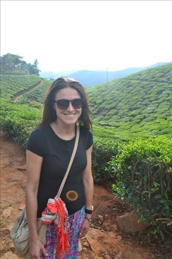 Munnar- Tea plantations
