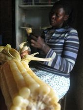 Beatrice, Jude's mother and experienced dancer, shows me how to shuck corn.: by man_unstuck, Views[456]