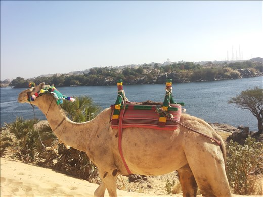 A view pf the Nile from Nubia