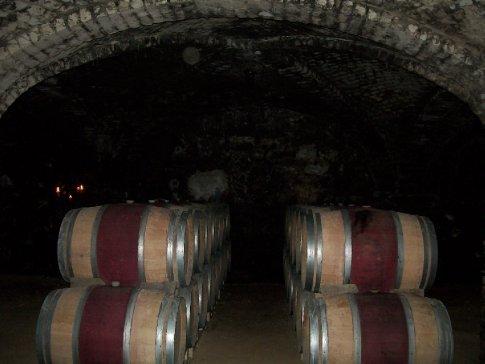 Barris de carvalho francês, maturando o vinho premium Cabo de Hornos em sua primeira fase.