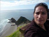 by manjinder_nagra, Views[253]