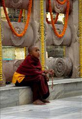 A young monk in Bodhgaya: by manjuka, Views[126]