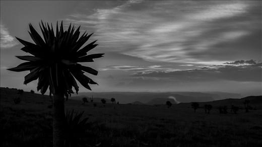 SImien Mountains. Etiopia