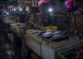 Mercado de pescado (1). Bali: by manuel, Views[15]