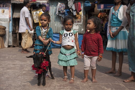 Little girls holding a goat to be sacrificed in the Sunday ritual at Kalighat.
