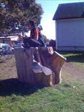 Thea still on the stump in P.R.: by margitpirsch, Views[378]