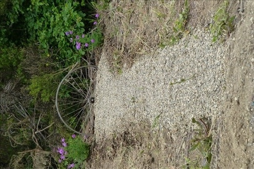 a road side grave - a cyclist died here only a week before.