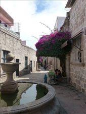 Callejon del romance in Morelia: by margitpirsch, Views[110]