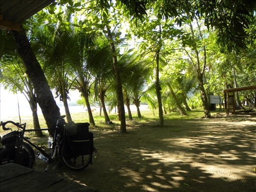 Sweet shade, perfect temperature at Pochote Beach