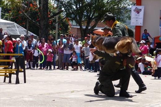 Dog show in Piendamo
