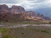 beats the boring desert...: by margitpirsch, Views[160]