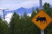 Leaving Anchorage.: by margitpirsch, Views[269]