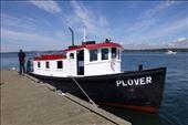 The ferry to Blaine.: by margitpirsch, Views[559]