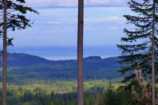 View of Vancouver island - thanks to the logging we can see it...