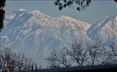 Nope, not the Alps.....the mountains behind Los Angeles, CA: by margitpirsch, Views[23]