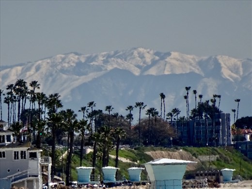 Palm trees, ocean, mountains and snow in CA