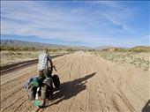 Box Canyon Rd (Desert Center): by margitpirsch, Views[66]