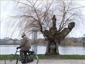 I call this one - Man riding bike past man-tree near lake on cold day.: by maria_brett, Views[161]