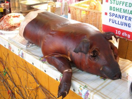 With life such a prominent theme at this time of year, unfortunately it ended early for this poor fella. Not only was he stuffed full of... meaty stuffing, but he was also made to lie there on display while all the pesky tourists took photos of his mug. (Oops, does that include me?!)