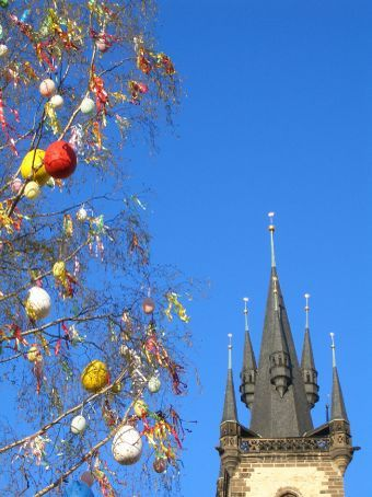 Easter - or 'Velikonoce' - in the centre of Prague. Painted eggs everywhere, even the trees were sprouting them.