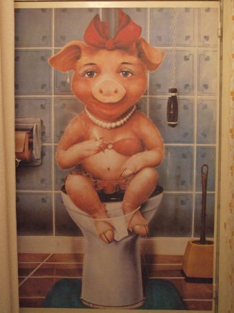 Our 60 year old temp landlord has this poster hanging in her toilet.  Quite fitting really.