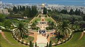 Bahai garden : by mariabuenahora, Views[133]